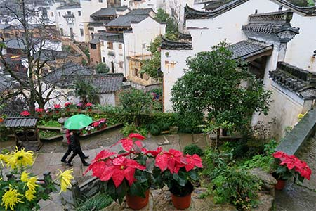 Beau paysage du district Wuyuan en Chine