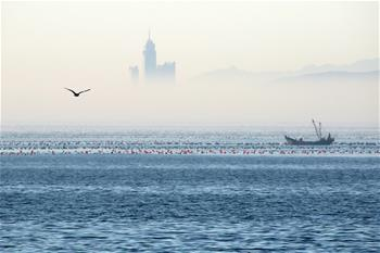 Chine: brouillard d'advection à Yantai