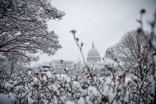 Etats-Unis : neige à Washington